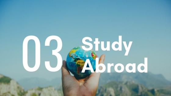 【大学生の海外インターンシップ】英文履歴書の書き方とおすすめテンプレートまとめたよ ✈️4